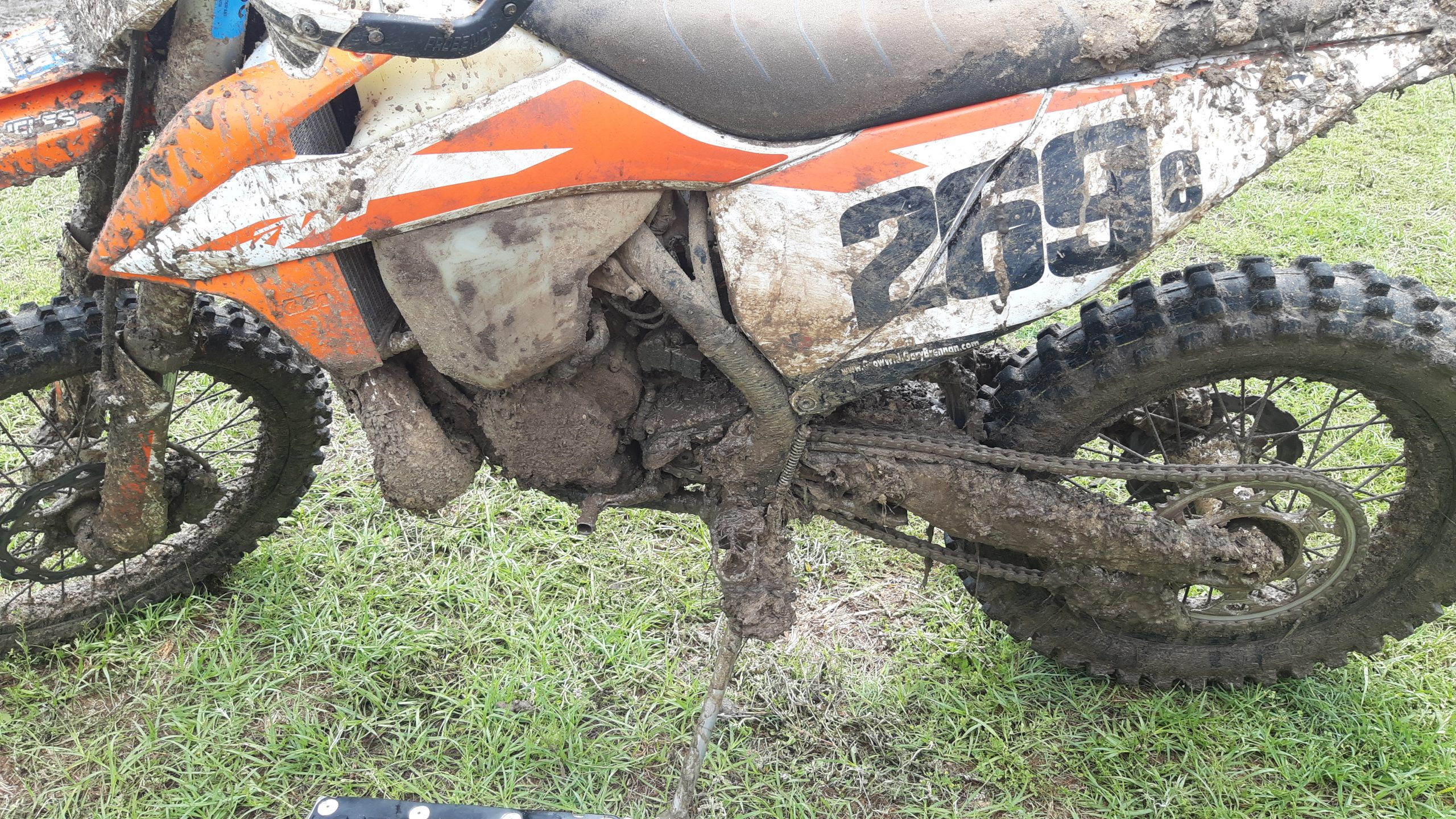 More Mud Pics from Gatorback!